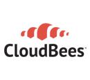 CloudBees Dumps Exams