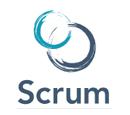 Scrum Dumps Exams